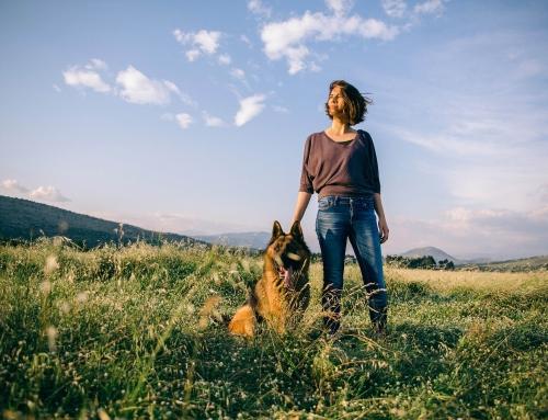 Hondenras kiezen: Soort zoekt soort